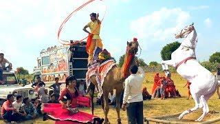 New Dj Rasiya || मेरी एड़ी की धमक   Meri Adi Ki dhamak || Rajasthani Sekhawati