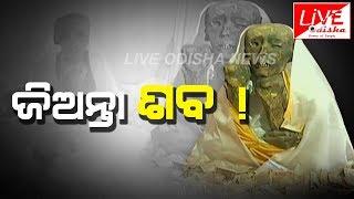 #550 #ବର୍ଷର_ଜିଅନ୍ତା_ଶବ ! #Special_Report    Live Odisha News