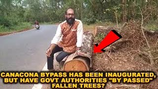 "Canacona Bypass Has Been Inaugurated, But Have Govt Authorities ""By Passed"" Fallen Trees?"