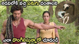 అడవిలోకి వచ్చి ఏనుగు దంతాలని ఎలా దొంగిలిస్తున్నారో చూడండి | Watch Gajendrudu Full Movie On Youtube