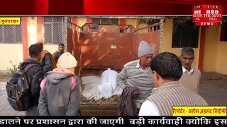 सुबह की सैर पर गए बुजुर्ग की गोली मारकर दर्दनाक हत्या की अपराधियों ने और उसके बाद।  THE NEWS INDIA