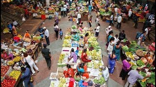 CCP To Sign Agreements With Vendors at Panaji Market; Survey Conducted