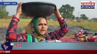 देशभर में आसमान छू रहे प्याज के दाम, खंडवा में किसानों को करना पड़ रही है प्याज की पहरेदारी। #bn