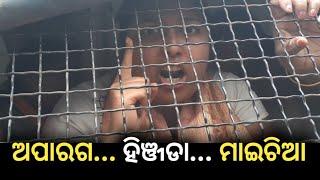 ABVP member slams Odisha Govt in Bhubaneswar Aakrosh Rally, ଏହି ଛାତ୍ରୀ କଣ କଣ ସବୁ କହିଗଲେ ଦେଖନ୍ତୁ