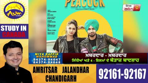 Peacock | New Song | Jordan Sandhu | Rubina Bajwa | First Look | Dainik Savera