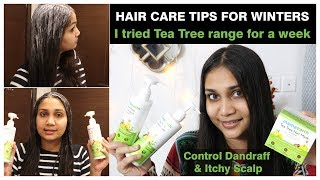 1 Week Challenge - Get Rid of Dandruff & Itchy Scalp | Tea Tree & Lemon Oil Hair Mask & Shampoo