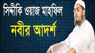নবীর আদর্শ । Nobir Adorsho । Mawlana Hafijur Rahman Siddiki | Bangla Waz mahfil 2019 | Islamic BD