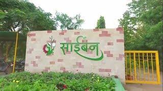 निसर्गाचे नंदनवन साईबनमध्ये प्रसिद्द हुरडा महोत्सवाला सुरुवात | Saiban Ahmednagar