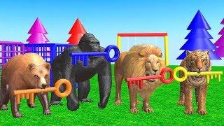 Impara i colori in inglese con palloni da calcio, spinner, camion dei pompieri e perline #70