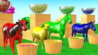 Belajar Hewan liar untuk anak-anak - Mainan binatang untuk anak anak | Toys For Kids.