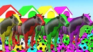 Impara i colori in inglese con palloni da calcio, spinner, camion dei pompieri e perline #72