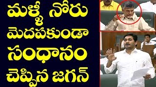 CM YS Jagan Slams TDP Leaders | Chandrababu Naidu | Acham Naidu | AP Assembly Live | Top Telugu TV
