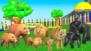 Impara i colori con i palloni da calcio dei mostri della macchina. Veicoli stradali per bambini
