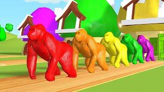 Impariamo i colori in italiano con bottiglie di coca cola palloni da calcio canzoni per bambini