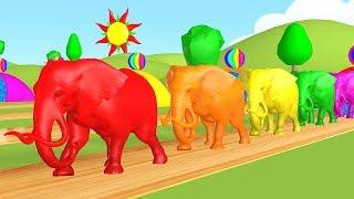 Pelajari warna dengan warna permen karet dan balon hewan - jari keluarga warna lagu.