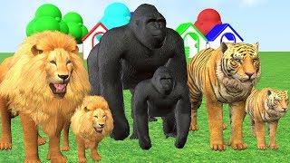 Pelajari warna warna dengan warna permen karet dan balon hewan #16