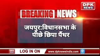बडी खबर || जयपुर के लाल कोठी में घुसा पेंथर || RJ 18 केफे में है पेंथर
