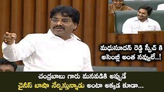 MLA Biyyapu Madhusudhan Reddy Hilarious Speech In Assembly | CM YS Jagan