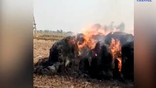 Halvad| Fire burns in dry kadab kept for cattle in Ghanshyam Garh village| ABTAK MEDIA
