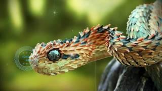 दुनिया के अजीबो गरीब जानवर जिन्हे देखकर डर भी सकते है आप /Most Interesting Animals in The World