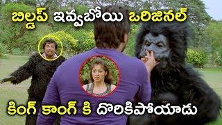 ఒరిజినల్ కింగ్ కాంగ్ కి దొరికిపోయాడు | Sanjana Reddy Movie Scenes | Raasi | Raai Laxmi