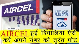 This Simple way to port the Aircel number | How To Port Aircel Number to Airtel