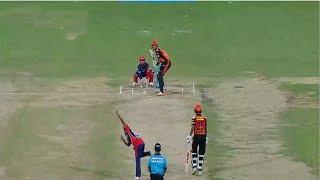 गब्बर और केन विलियमसन की पारी के आगे पंत की पारी बेअसर ,Sunrisers beat Delhi Daredevils by 9 wickets