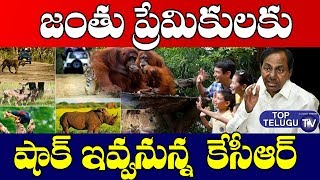KCR Going To Form A New Board For Telangana Forest Development | Telangana News | Wild Life