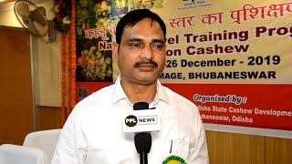 National Level Training Program by Odisha State Cashew Development Corp. & DCCD in Bhubaneswar