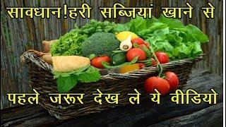 Health News | हरी सब्जियां खाने से पहले जरूर देख ले ये वीडियो | News Remind