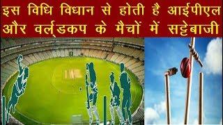 Cricket News   इस विधि विधान से होती है आईपीएल और वर्ल्डकप के बड़े मैचों में सट्टेबाजी   News Remind