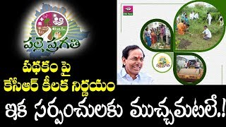 Telangana Palle Pragathi Scheme Analysis By Raghavendra | Telangana News | CM KCR | Top Telugu TV