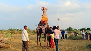 New Dj Rasiya    मेरी एड़ी की धमक - Meri Adi Ki dhamak    Vid Evolution Rajasthani