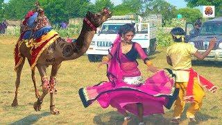 Rajasthani Gurjar Rasiya Video Song | मेरी एड़ी की धमक | Vid Evolution Rajasthani