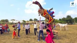 Rajasthani Gurjar Rasiya 2020 | मैं तितली बागों की | Latest Video Song 2020 | Vid Evolution Rajastha