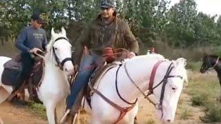 Dboss Darshan Horse Riding With His Son Vineesh | ಮಗ ವಿನೀಶ್ ಗೆ ಕುದುರೆ ಸವಾರಿ ಹೇಳಿಕೊಟ್ಟ ಡಿ ಬಾಸ್