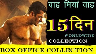 DABANGG 3 BOX OFFICE COLLECTION DAY 15 | DABANGG 3 15TH DAY World Wide Collection | News Remind