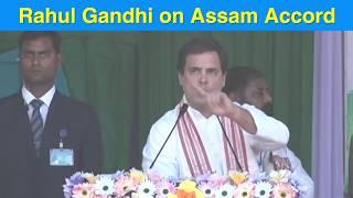 Shri Rahul Gandhi on Assam Accord