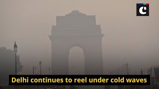 Delhi continues to reel under cold waves