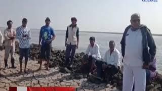 Hadvad: Narmada water leaking into Haldav-Ramada Canal as well as sub-canal | ABTAK MEDIA