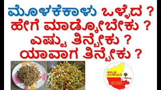 How to make Sprouts at home in Kannada |Molake kalu | Truth about Sprouts | Kannada Sanjeevani