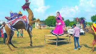Rajasthani Gurjar Rasiya 2019 | मैं तितली बागों की | Latest Video Song 2019 || Rajasthani Sekkawati