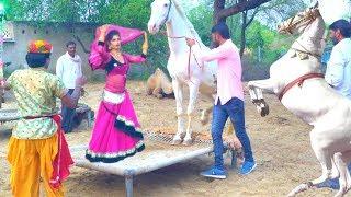 New Dj Rasiya || मेरी एड़ी की धमक - Meri Adi Ki dhamak || Rajasthani Sekhawati