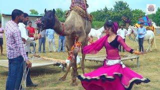Rajasthani Gurjar Rasiya | छज्जे ऊपर बोयो री यबाजरो | Full HD Video Song 2020 | Maina