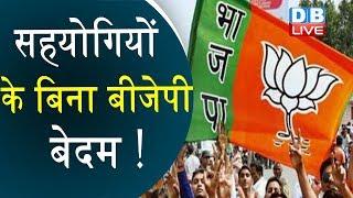 सहयोगियों के बिना बीजेपी बेदम ! | Devendra fadnavis denies meeting with Raj Thackeray | #DBLIVE