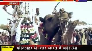 Bikaner | International Camel Festival, मेले में देशी -विदेशी पावणों का उमड़ा हूजुम