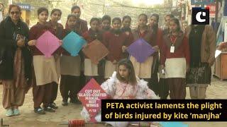 PETA activist laments the plight of birds injured by kite 'manjha'