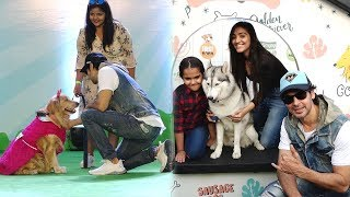 Dino Morea Attend PET FED India's Biggest Pet Festival | PET FED Festival In Mumbai