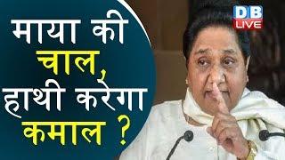 Mayawati की चाल, हाथी करेगा कमाल ? | Mayawati appoints Brahmin as leader in LS | Mayawati news