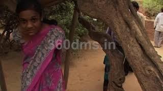 Krishna Janmashtmi  in Vrindavan (Seg-2 ) https://beingpostiv.com/